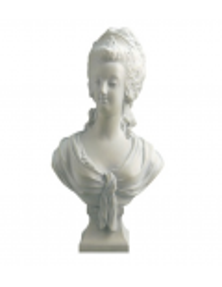 Bust of Marie-Antoinette by Jean-Nicolas-Alexandre Brachard