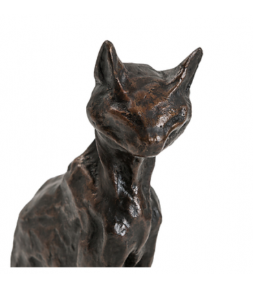 Abyssinian Cat by Steinlen