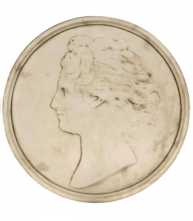 Medallion woman's face with loose hair.