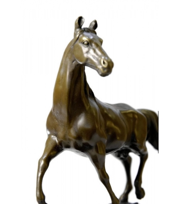 Horse at trot by Miguel Fernando Lopez (Milo)
