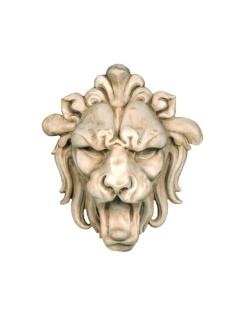 Petite tête de lion