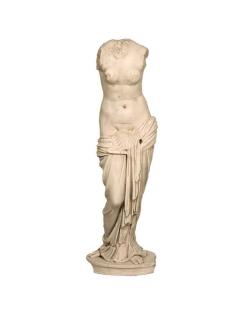 Venus au coquillage