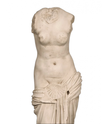 Venus with shell