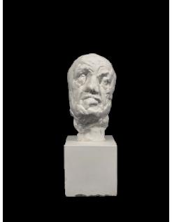 La máscara del hombre de la Nariz Rota - Auguste Rodin