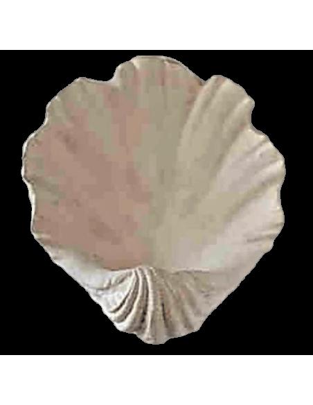 Tazón de fuente o concha en forma de almeja gigante