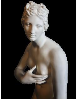 Estatua de la Venus de Médicis - estatua de tamaño real