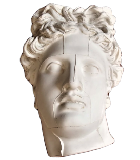 Bust of the Belvedere Apollo