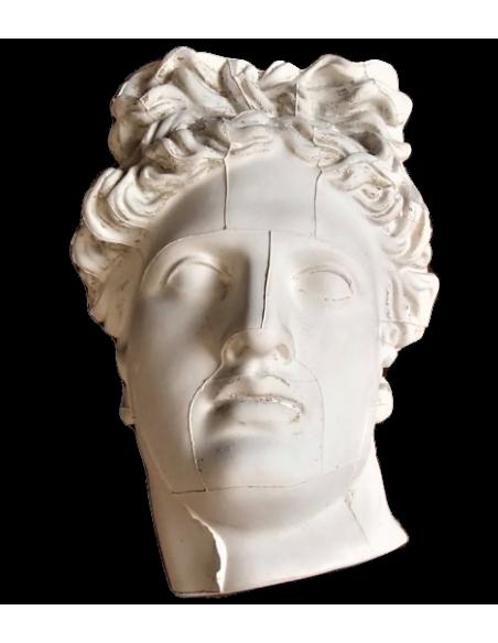 Buste de l'Apollon du Belvédère