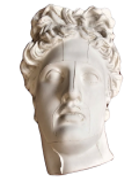 Busto del Apolo del Belvedere