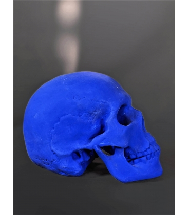 Skull moulded from an authentic human skull