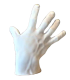 Study of the right hand from an antique statue