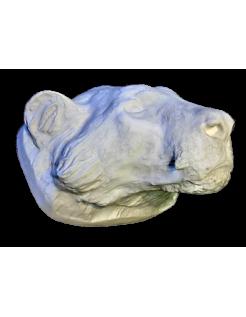 Tête de tigre moulée à partir d'un original