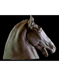 Cabeza de caballo antigua