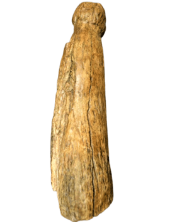 Phallus de l'abris Blanchard - Castel-Merle