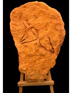 Cupules et vulves de Néandertal de Ferrassie - Le Bugue