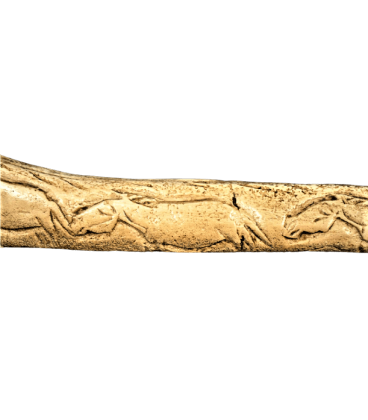 Baton perforated with engraved wild horses from Abri de la Madeleine