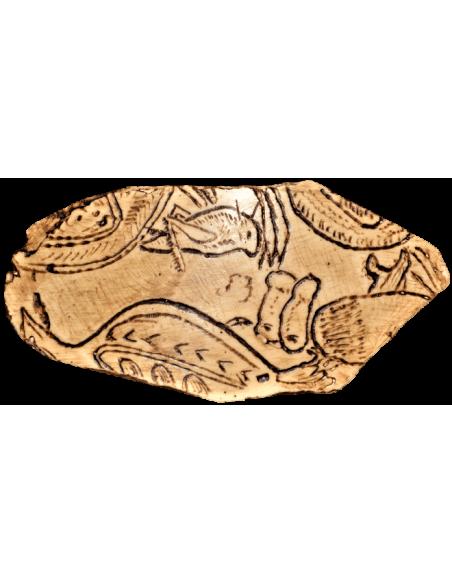 Grabado de saltamontes y aves - Cueva de Enlène