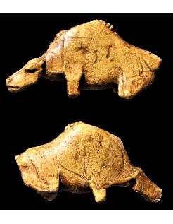 Le bison mugissant de l'abri de la Madeleine