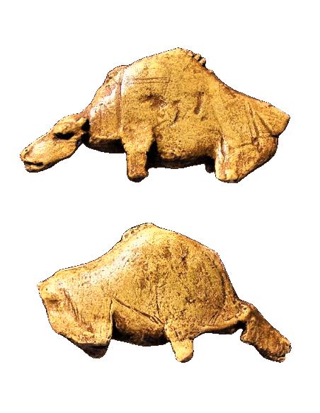 The roaring bison of the abri de la Madeleine